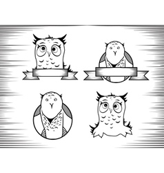 Crazy Owl vector image