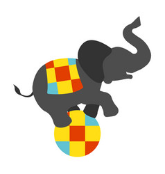 circus elephant on the ball icon vector image