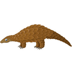 cartoon pangolin isolated on white background vector image
