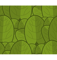Spinach seamless pattern Fresh green ornament vector
