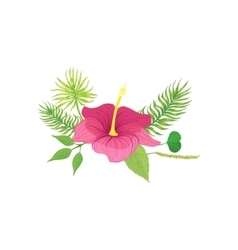 Tropical Flower And Leafs Hawaiian Vacation vector image