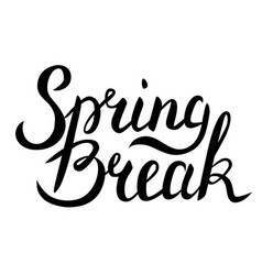 spring break lettering vector image vector image