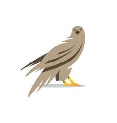 Eagle Cartoon vector image