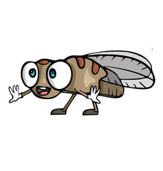 cute little cartoon fly insect vector image