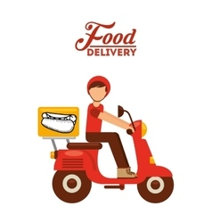 food delivery vector image