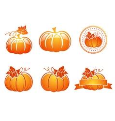 Orange Pumpkin Set vector