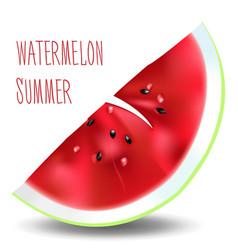 Piece watermelon vector