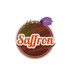 Saffron Spice vector image