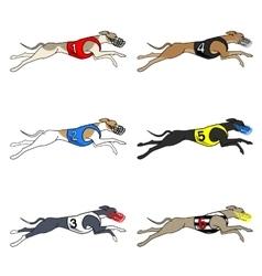 Set of running dog Whippet breed vector