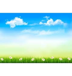 Summer nature background with green grass and sky vector image