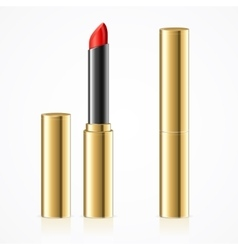 Red lipstick in gold metal tube set vector