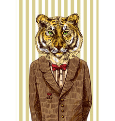 tiger in jacket vector image