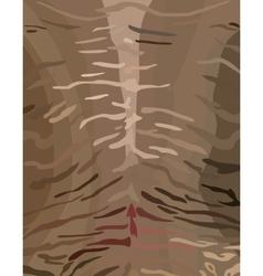 Tiger skinstripes vector image