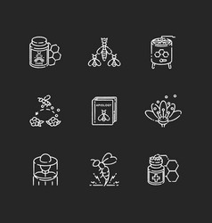 Apiculture chalk white icons set on black vector