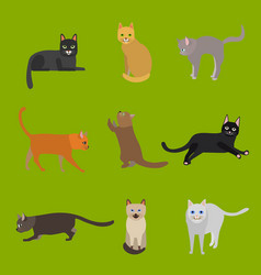 cartoon different types cute cats characters icon vector image