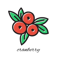 Doodle cranberry Hand-drawn object isolated on vector image