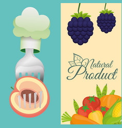 food healthy natural product poster vector image