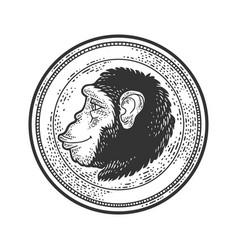 Monkey coin sketch vector