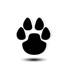 paw logo vector image