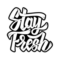 stay fresh lettering phrase on white background vector image