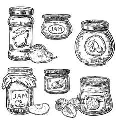 ink hand drawn style fruit jam jar icon set vector image