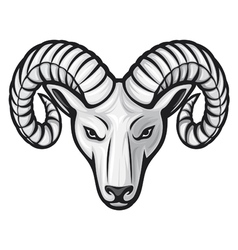 head of the ram - ram head vector image vector image