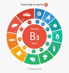 Foods high in vitamin B3 vector image