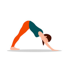 Standing forward bend pose vector