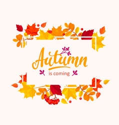 autumn is coming banner with autumn leaves frame vector image vector image