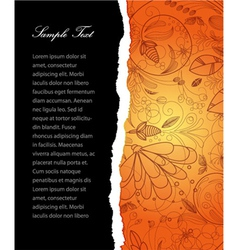 torn cardboard with floral vector image vector image