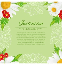 floral background with white chamomiles vector image