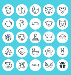 Animal icons set collection of ladybird cobweb vector