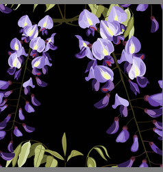 Beautiful seamless floral summer wisteria flower vector