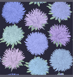 beautiful seamless pattern with aster flowers vector image