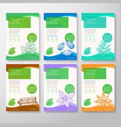fresh local nuts and spices labels packaging vector image