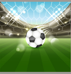 soccer stadium with a ball on the grass and vector image