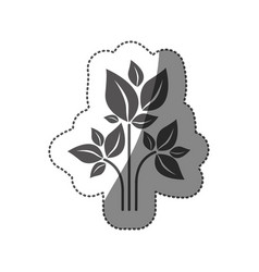 sticker silhouette of plant with branch and leafs vector image vector image