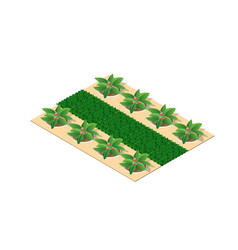 trees a park flower bed vector image