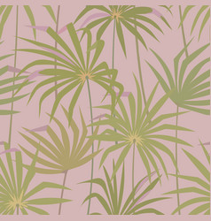 tropical palm leaves seamless pattern vector image