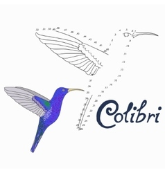 Educational game connect dots to draw colibri bird vector