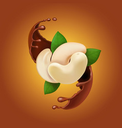 Chocolate splash and cashew realistic vector