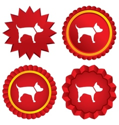 Dog sign icon Pets medal symbol vector