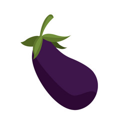 eggplant vegetable nutrition food diet vector image