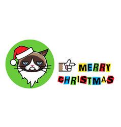 grumpy santa claus cat in christmas hat vector image