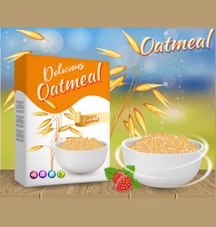 Oatmeal ads realistic vector