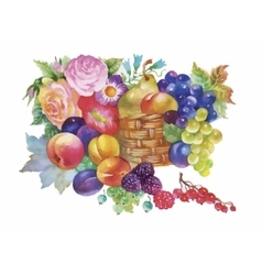 Colorful summer ripe fruits basket watercolor vector