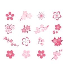 Cherry blossom japanese sakura icon set vector
