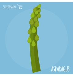 Asparagus icon vector image