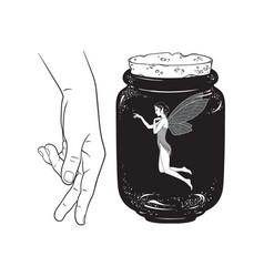 beautiful girl fairy pixie in jar line art vector image