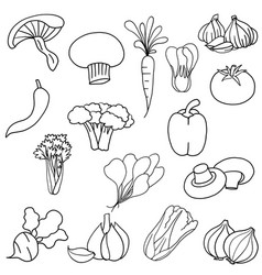 Collection simplicity vegetable flat design vector